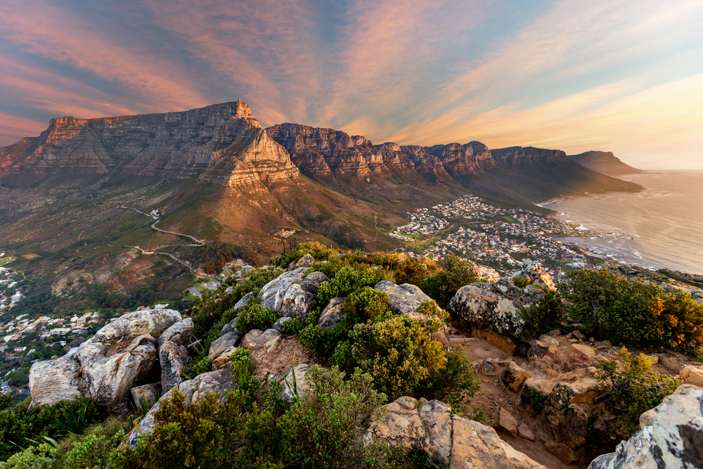 Why You Should Go to South Africa on Your Next Vacation
